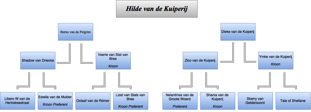 drawit-diagram12