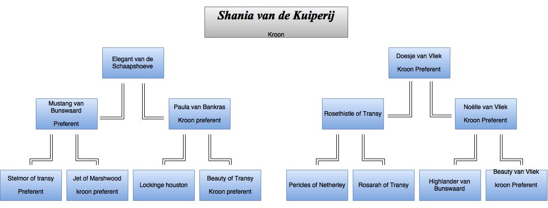 drawit-diagram15