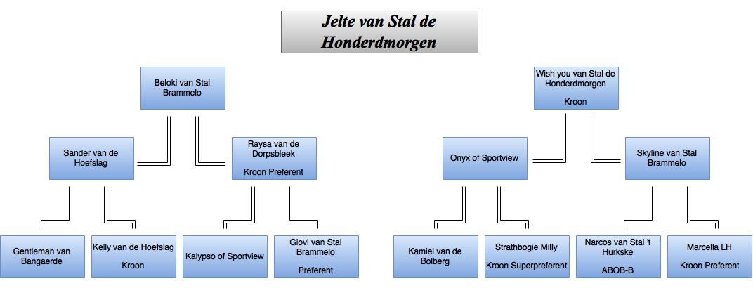 drawit-diagram22