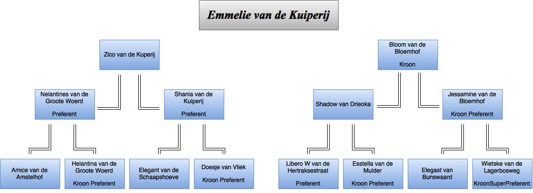 drawit-diagram29