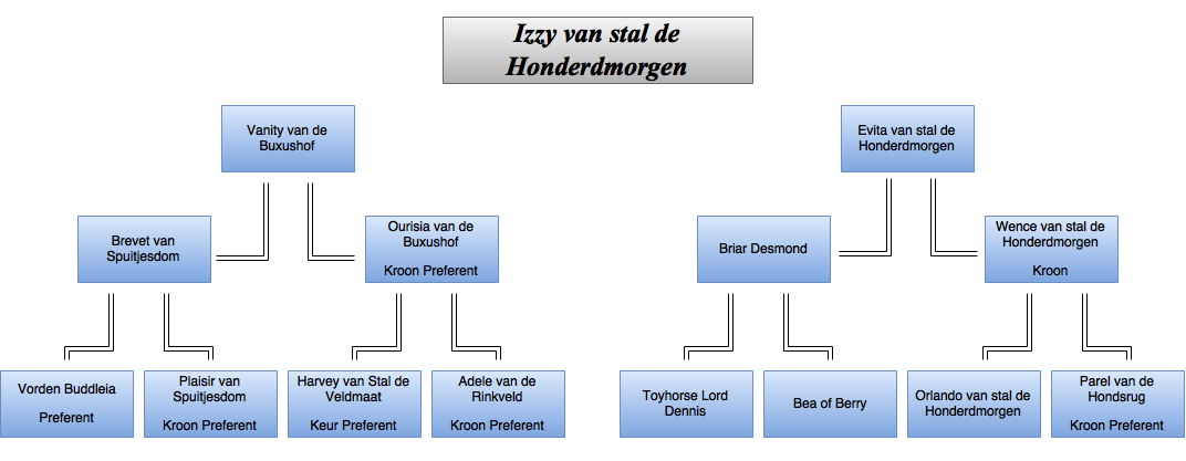 drawit-diagram31