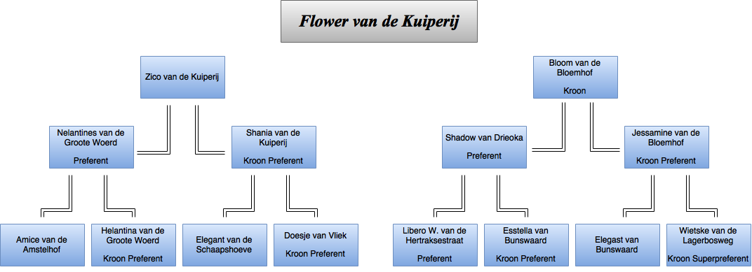 drawit-diagram32