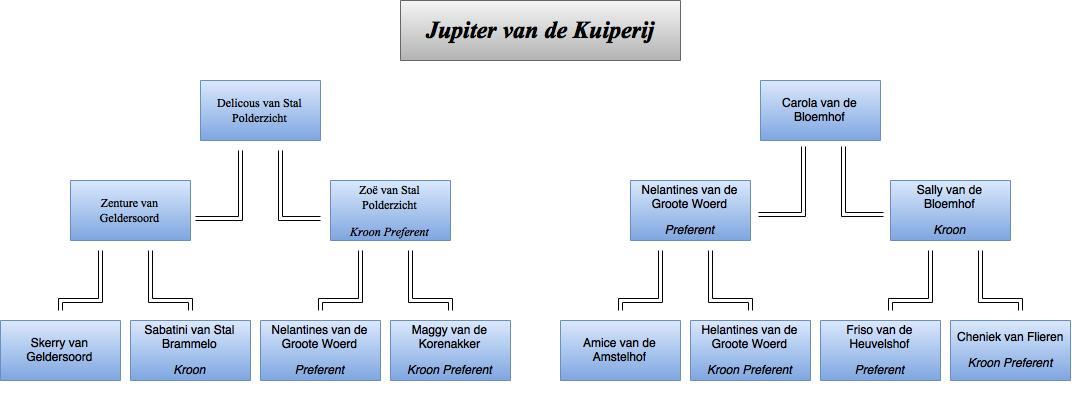drawit-diagram9