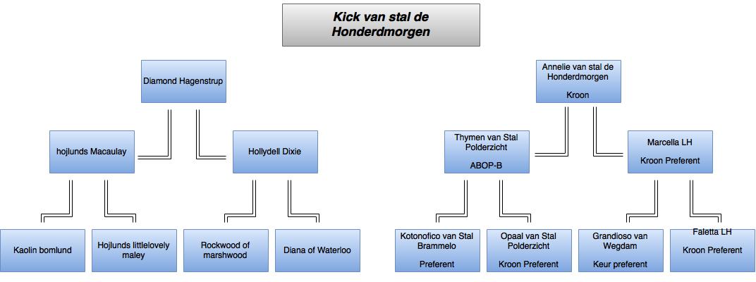 drawit-diagram3