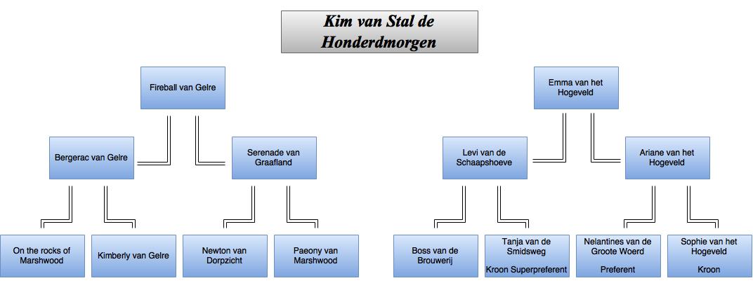 drawit-diagram4