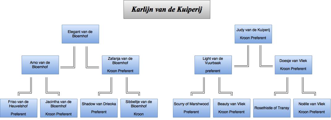 drawit-diagram8